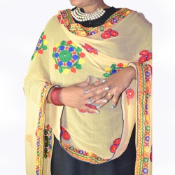 Buy colourful Phulkari dupatta/ stole for women.